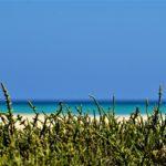 Paysage Voyage Canaries